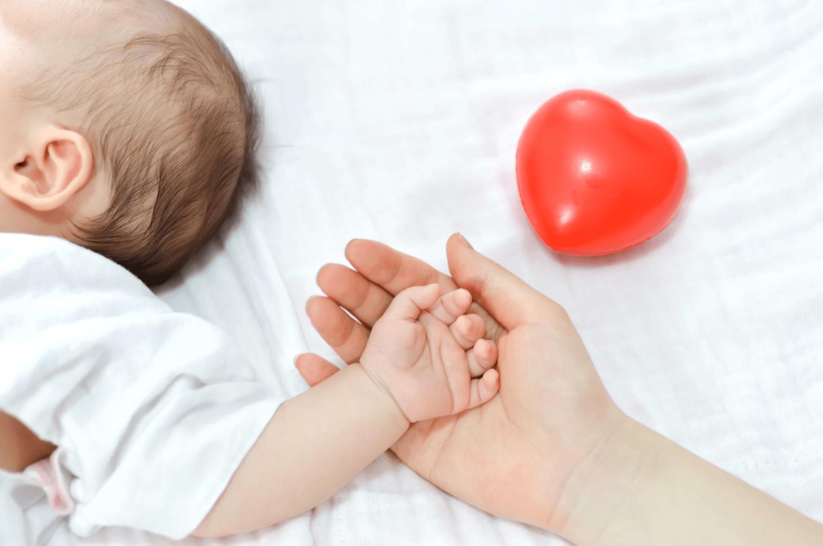 microcefalia bebes